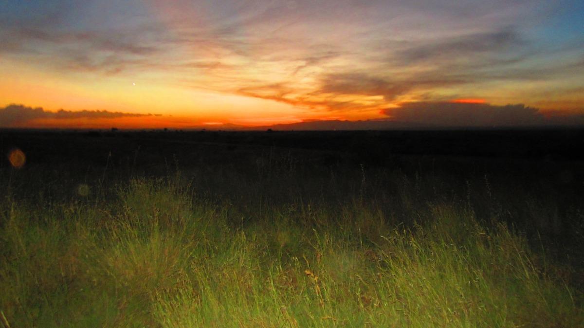Sunset In Nairobi National Park.