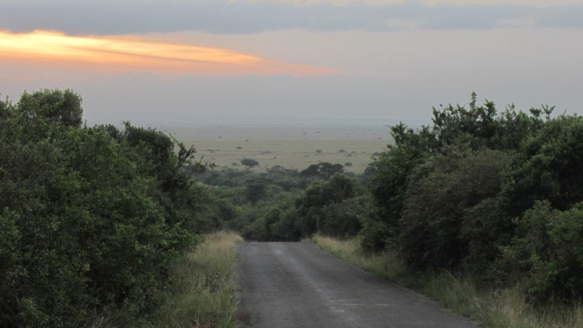 Sunrise In Nirobi National Park.