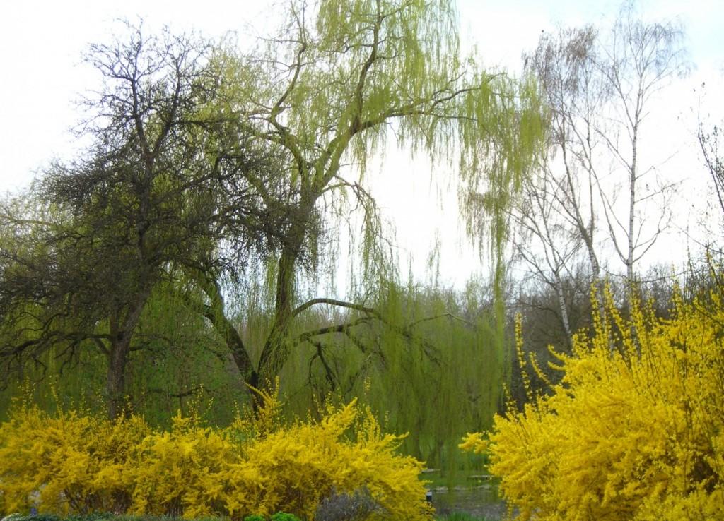 Frühling.