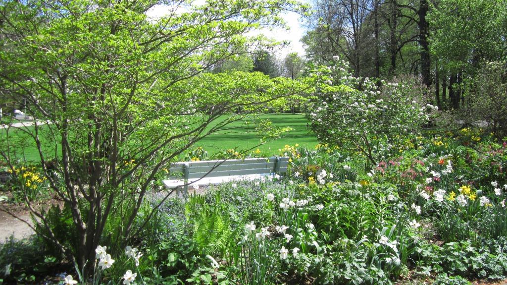 Bliss In Spring...