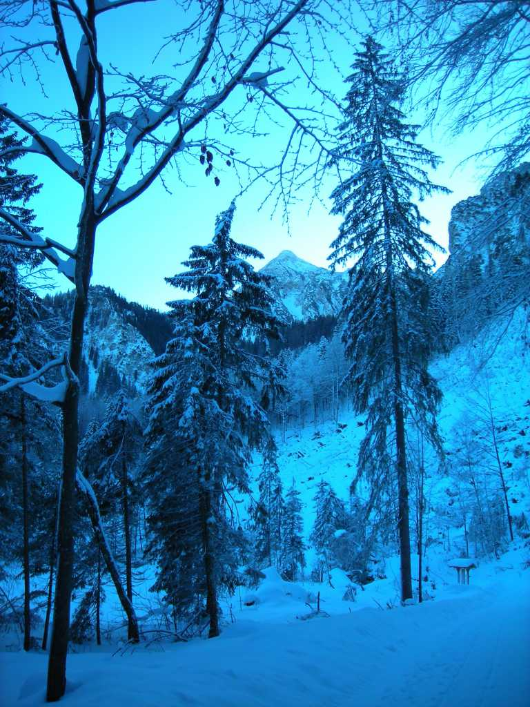 Winter In The Alps.