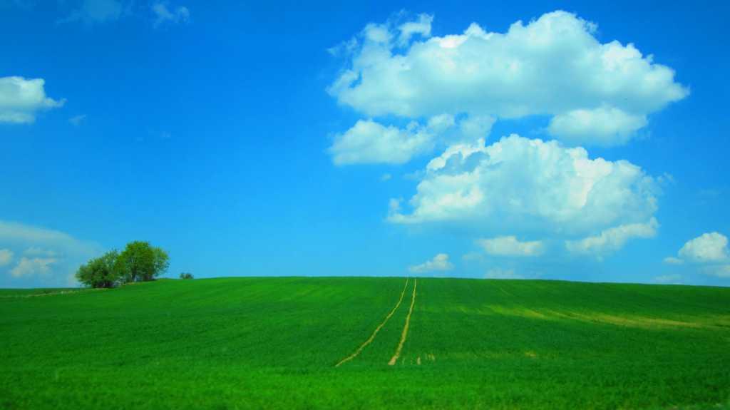 W drodze do Siwiałki...