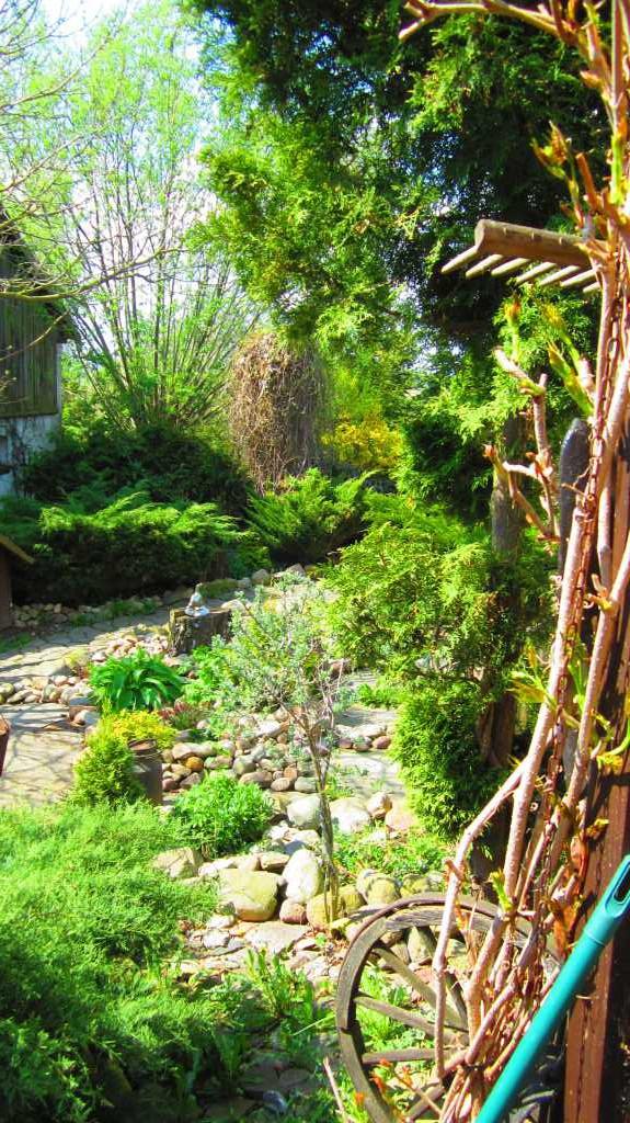 Zaczarowany ogród w Siwiałce...