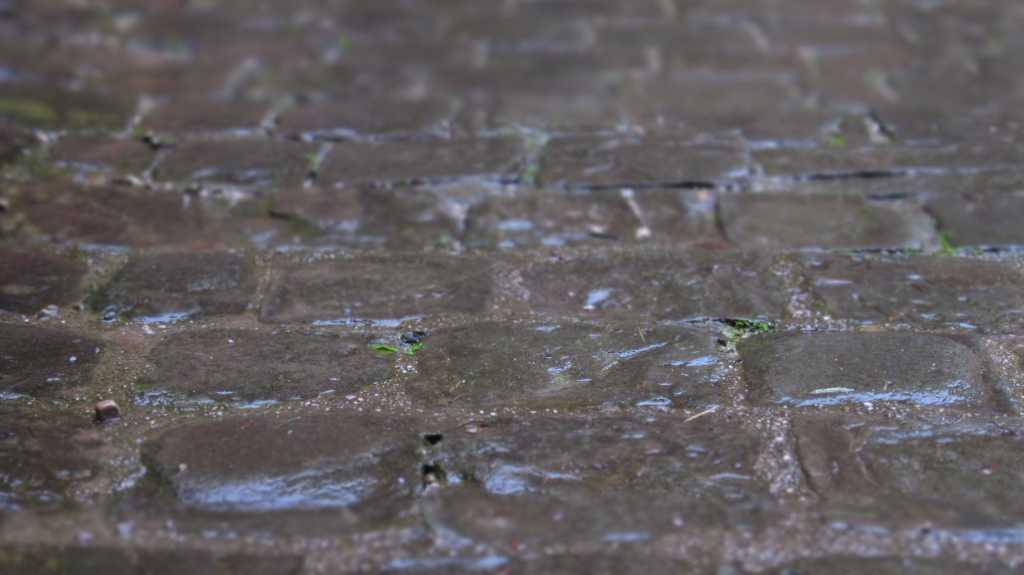 Wet Cobblestones In Salzburg, Austria.