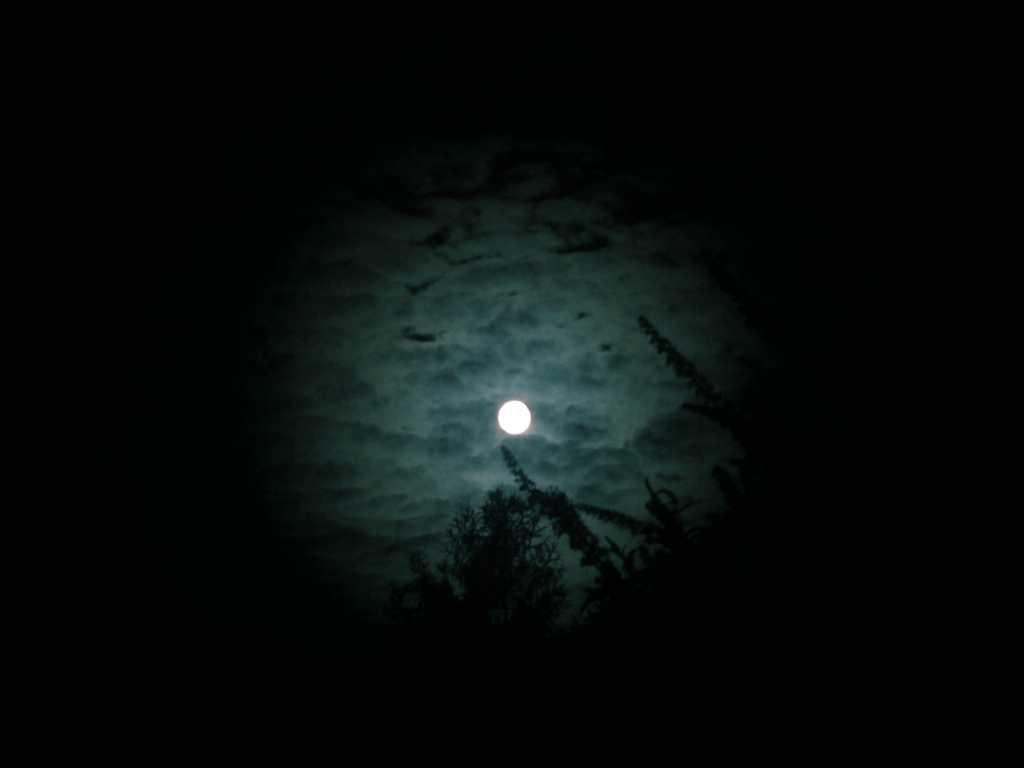 Blue Moon, 31.7.2015