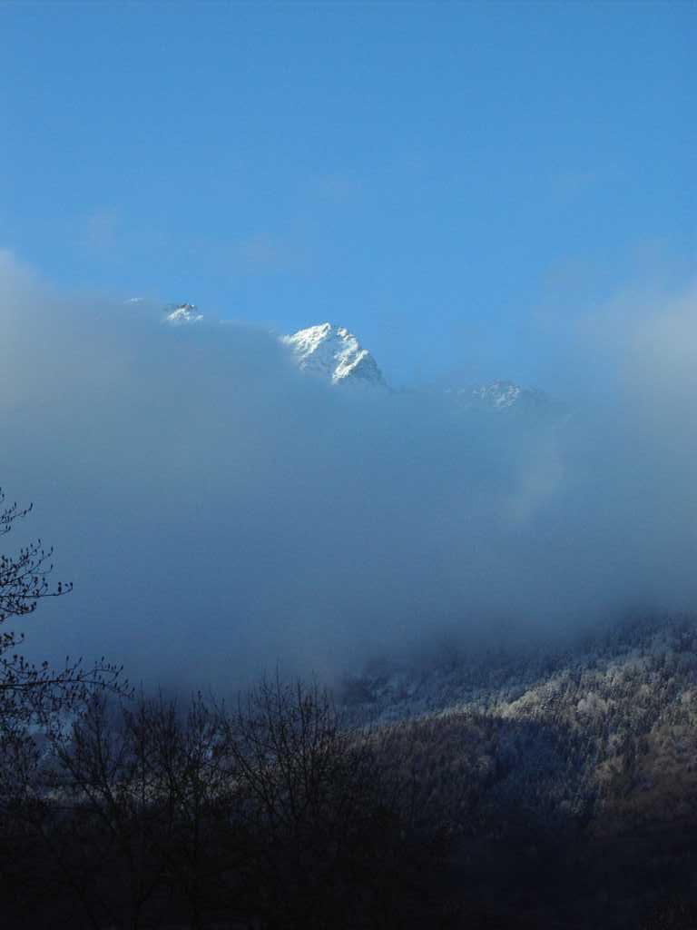 Nebel im Tal...